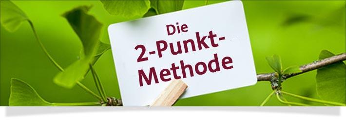 In der Anwendung der Matrix-Energie / Quantenheilung verbindet man sich mittels der 2-Punkt Methode einerseits mit dem Thema des Klienten (1. Punkt) und mit der entsprechenden Information in der Matrix (2. Punkt).